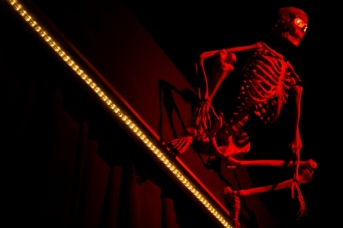 skeleton over stage